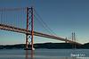 Golden Gate Capital new owner of Ex Libris